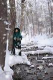 alps räknade trän för vintern för schweizare för snow för husplatsen lilla fotografering för bildbyråer