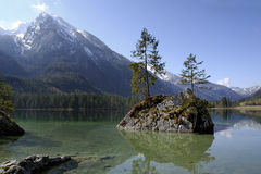 Alps, ramsau-hintersee Royalty Free Stock Photo