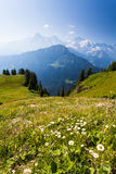 The Alps Royalty Free Stock Photography