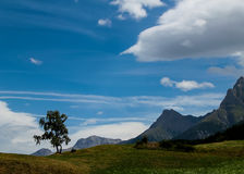 The Alps Stock Images