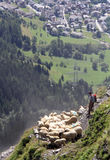 Alps shepherd festival royalty free stock image