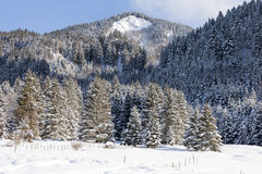 Alps in the snow, Bavaria, Germany Stock Images