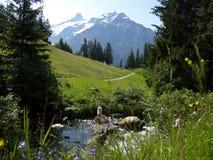 alps stać na czele rzekę zdjęcie royalty free