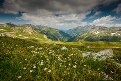 Alps. Summer landscape with Alpine meadows -Hohe Tauern National Park, Austria Stock Image