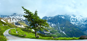Alps summer panorama (Austria). Royalty Free Stock Images