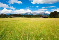 Alps summer view Stock Photography