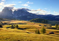 Alps sunrise green mountain panorama landscape, Alpe di Siusi Royalty Free Stock Photography