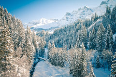 alps szwajcarscy Fotografia Stock