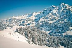 alps szwajcarscy Obrazy Royalty Free