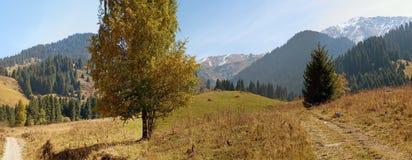 Alps view Stock Photo