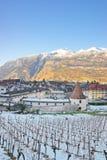 Alps and Vineyard in Chur at sunrise Stock Photo