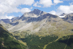 Alps in the Vinschgau Stock Photography