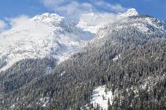 Alps w austriaku fotografia stock