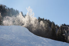 Alps in winter Royalty Free Stock Photos