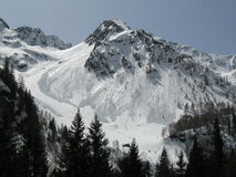 Alps in winter. View of a winter mountain landscape with snow and firs Stock Images