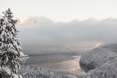Alpsee lake in winter landscape Stock Photos