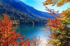 Alpsee sjö bavaria germany Fotografering för Bildbyråer