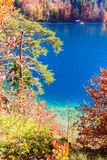 Alpsee sjö bavaria germany Royaltyfri Foto