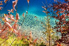 Alpsee sjö bavaria germany Royaltyfria Foton