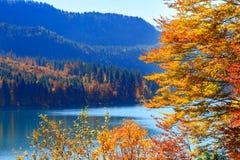 Alpsee sjö bavaria germany Royaltyfria Bilder