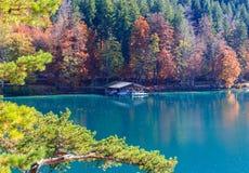 Alpsee sjö bavaria germany Arkivfoton