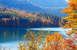Alpsee sjö bavaria germany Royaltyfri Fotografi