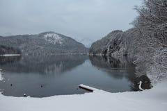 Alpsee sjö i vintertid med bergreflexion germany Royaltyfri Foto