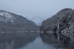 Alpsee sjö i vintertid med bergreflexion germany Royaltyfria Bilder