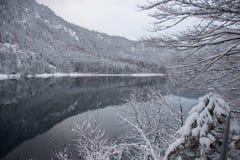 Alpsee sjö i vintertid med bergreflexion germany Arkivbilder