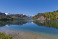 Alpsee sjö på Hohenschwangau Royaltyfria Bilder