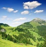 alpsEuropa schweizare royaltyfria bilder