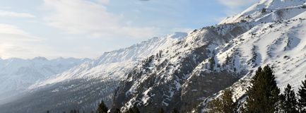 Alpsna Royaltyfri Foto