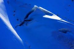 alpspennine Arkivbilder