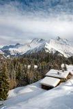 alpy kształtują obszar zimę Obraz Stock
