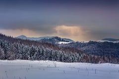 alpy objętych domowej sceny zimy małe szwajcarskie śnieżni lasu Obraz Stock