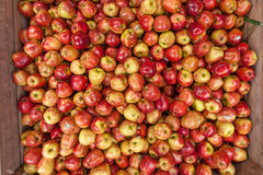 Alqueires completamente do vermelho fresco - maçãs deliciosas para a venda Dep raso Fotos de Stock Royalty Free
