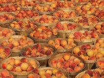 Alqueires de pêssegos Imagem de Stock Royalty Free