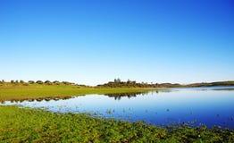 Alqueva lake near Amieira Royalty Free Stock Photography
