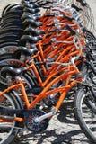 Alquiler de la bici Fotografía de archivo