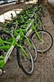 Alquiler de la bicicleta Imágenes de archivo libres de regalías