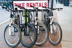 Alquileres de la bici de montaña Fotos de archivo libres de regalías