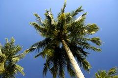 Alrededor de la playa en Singapur Imagenes de archivo