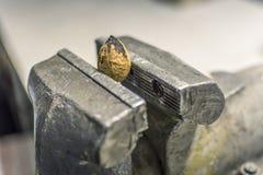 Alrededores diarios de la presión Nuez en un vicio imágenes de archivo libres de regalías