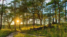Als schitterende zonsondergang Royalty-vrije Stock Afbeeldingen
