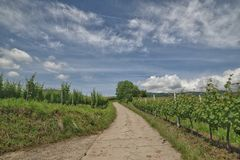 alsace Photographie stock