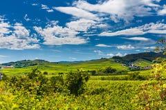 Alsace France Landscape Stock Photos