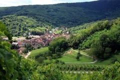 alsace france vingård Arkivbilder
