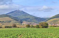 Alsace landscape near village Orschwiller Stock Image