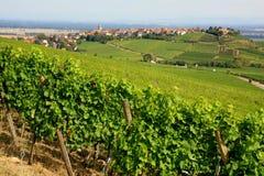 Alsace liggande Arkivbild