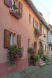Alsace street with flowers Stock Images